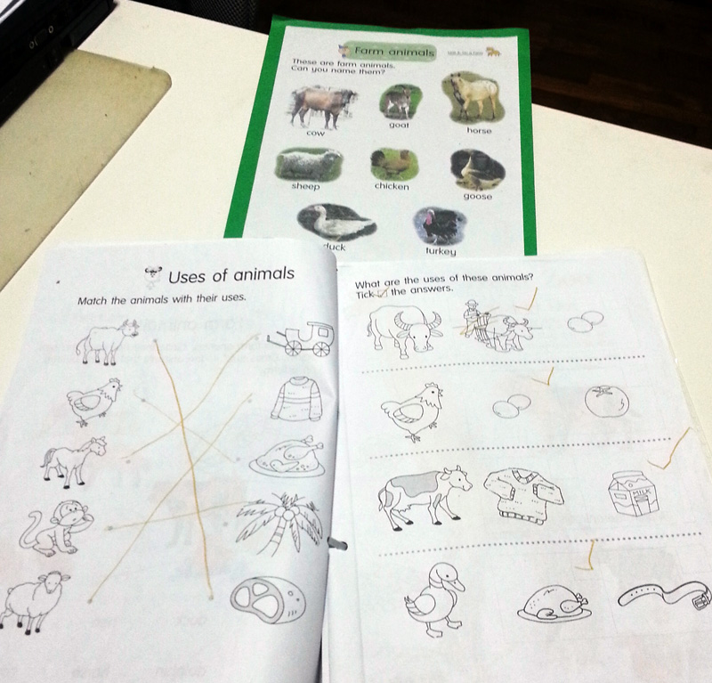 Activity sheets for farm animals