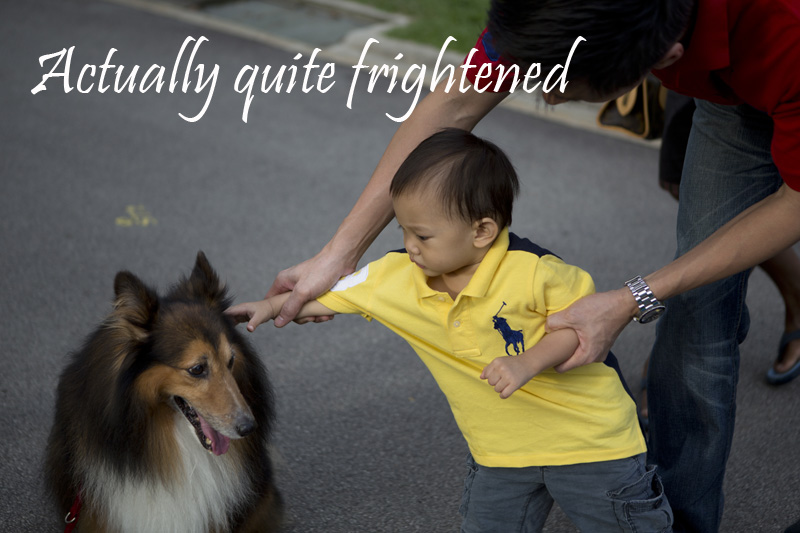 NG_Scared