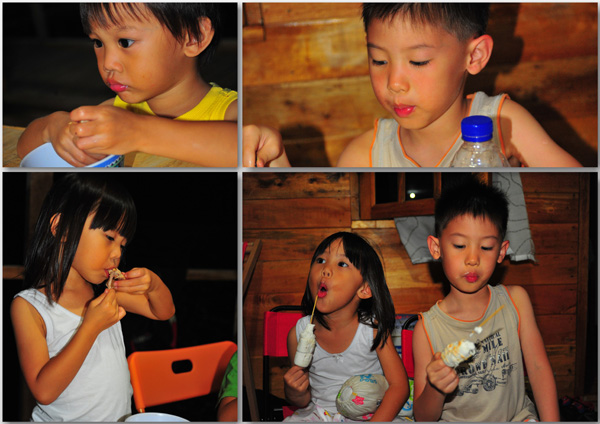 So the kids had chicken wings and bbq-ed marshmellows while waiting